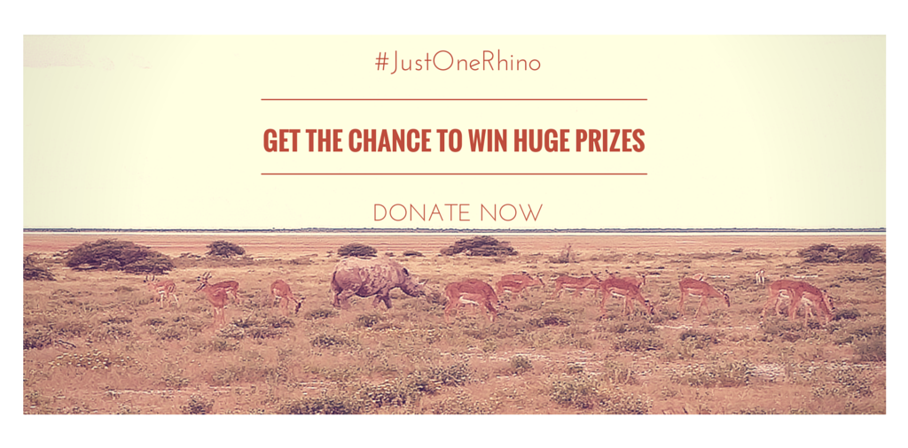 Save Just One Rhino