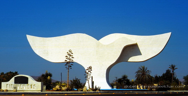 Artwork: peace dove and whale tail in La Paz, Mexico