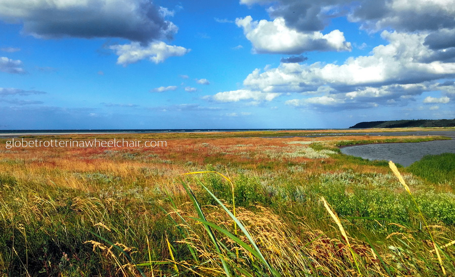 beach, blue sky and meadow - Danish summer