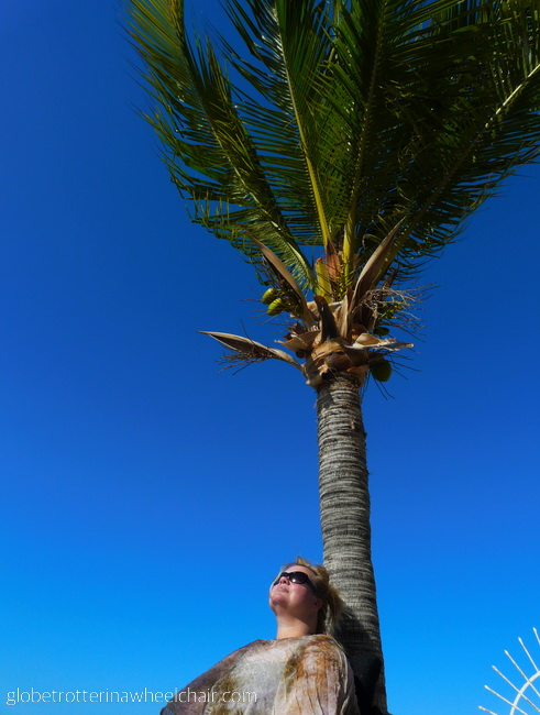 Kirsten; the globetrotter in wheelchair under a palm-tree © curiousKester.com | Kirsten K. Kester