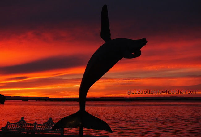 sunset and view of La Paz bay in Mexico, with sculpture of a jumping whale in front © curiousKester.com | Kirsten K. Kester