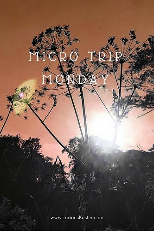 MICRO TRIP MONDAY
